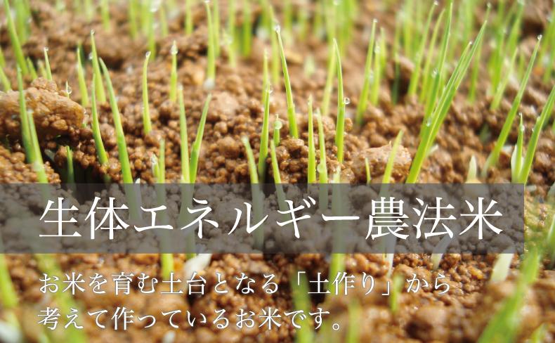 生体エネルギー農法米