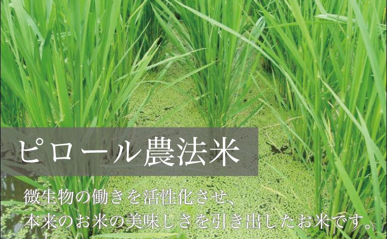 ピロール農法米